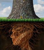 Take Root. And taking roots business and health care concept with underground tree roots in the shape of a human head as a tall tree grows above as an icon of Stock Images