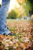 Take a stand. Young woman standing in the fall leaves Royalty Free Stock Photography