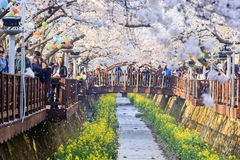 Take a trip to South Korea Stock Image