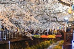 Take a trip to South Korea Royalty Free Stock Images