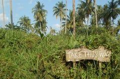 Take this way. Wooden signboard Take this way Stock Image