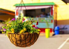 A  takeaway out of focus in the background with a hanging flowerpot and colorful flowers in the foreground.