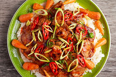 Takeawy classic pork on rice with fried in sticky souce carrots, sprinkle of chillie and spring onion. Takeawy classic pork on rice with fried in sticky souce Stock Images