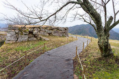 Takeda Castle Στοκ εικόνα με δικαίωμα ελεύθερης χρήσης