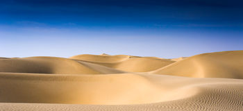 Takelamagan Desert. Desert, waves, golden sand and sky,this is Takelamagan desert stock photo