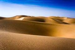 Takelamagan Desert Stock Photography