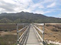 Tasman Beckoning stock image