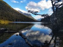Routeburn Reflection stock photography