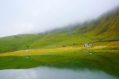 The Meadows. Taken from bedni Meadows uttarakhand india stock image