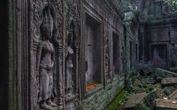 Carvings. Taken in Cambodia, these carvings were found in old ruins Royalty Free Stock Images