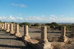 Ruins of Lixus royalty free stock photos