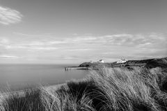 Seaton Sluice dunes in mono. Taken at Seaton Sluice in Northumberland UK Stock Image