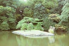 View of a Japanese garden with a pond in Tokyo, Japan. Taken in Shinjuku Gyoen, a popular Japanese garden in Tokyo, Japan Royalty Free Stock Image