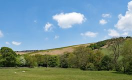Long range view of the tops of Stannage Edge and meadowland in Haversage. Taken on a sunny spring day, capturing gentle white clouds against an ideal blue sky Royalty Free Stock Images