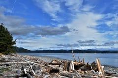 Den on Rebecca Spit Beach, Quadra Island, British Columbia. stock image