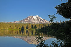 Takhlakh Jezioro Mt. Adams fotografia royalty free