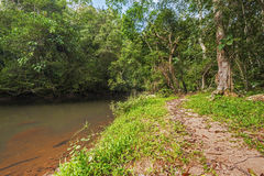 Takhong river in Khao Yai National Park Stock Photo