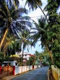 taki imponująco Goa zdjęcie royalty free