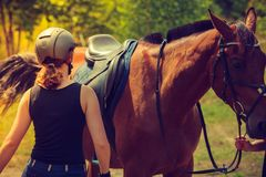 Jockey young woman getting horse ready for ride Stock Photos