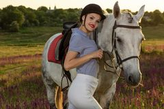 Jockey young girl petting and hugging white horse in evening sunset. Sun flare. Taking care of animals, love and friendship concept. Jockey young girl petting stock image