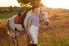 Jockey young girl petting and hugging white horse in evening sunset. Sun flare. Taking care of animals, love and friendship concept. Jockey young girl petting royalty free stock images