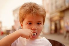 Taking care of a kids hair. Little child eating outdoor. Small boy with stylish haircut. Little child with short blond. Hair. Healthy hair care habits. Looking stock photos