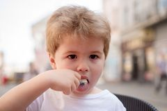 Taking care of a kids hair. Little child eating outdoor. Small boy with stylish haircut. Little child with short blond. Hair. Healthy hair care habits. Looking royalty free stock images