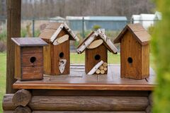 Free Taking Care Of The Birds. DIY Birdhouses Close-up, Side View Royalty Free Stock Photography - 216751327