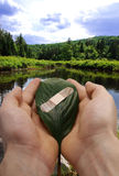 Taking care of the planet. Human hands holding bandaged leaf royalty free stock photos
