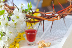 Taking Communion Royalty Free Stock Images