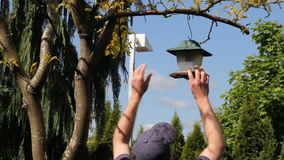 Taking Down Bird Feeder Stock Photography