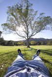 Taking it easy. Man relaxing under a tree Royalty Free Stock Image