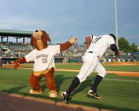 Taking the field. Charleston RiverDogs mascot Charlie high fives Alexander Palma as he takes the field to start the game Royalty Free Stock Photos