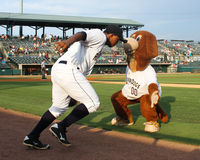 Taking the field. Charleston RiverDogs mascot Charlie high fives Alexander Palma as he takes the field to start the game Stock Image