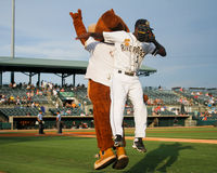 Taking the field. Charleston RiverDogs mascot Charlie high fives Jorge Mateo as he takes the field to start the game Royalty Free Stock Photos