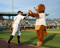 Taking the field. Charleston RiverDogs mascot Charlie high fives Vince Conde as he takes the field to start the game Royalty Free Stock Image