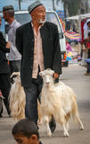 Taking goat for sale stock photography