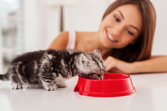 Taking good care of her pet. Stock Photos