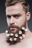 Taking good care of his beard. Stock Image