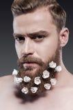 Taking good care of his beard. Stock Image