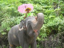 Taking his elephant out for a walk. Royalty Free Stock Photos