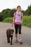 Taking a Labrador dog for a walk Royalty Free Stock Image