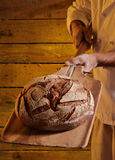 Taking out the bread Stock Photography