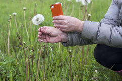 Taking Photo On A Mobile Phone Stock Photography