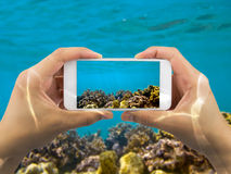 Taking photo under red sea Stock Images