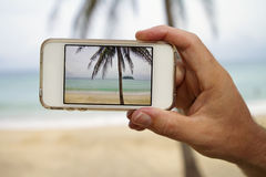 Taking photograph of palm tree with mobile cell phone. Close up of hand taking a photo of palm tree with mobile cell phone screen Stock Photography