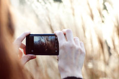 Taking picture with mobile phone Royalty Free Stock Photo