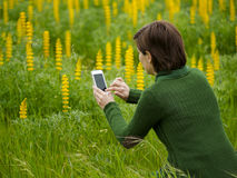 Taking pictures with a cellphone Royalty Free Stock Image