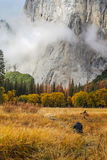 Taking Pictures at El Capitan Meadow. A photographer/hiker is taking pictures of El Capitan at El Capitan Meadow at Yosemite National Park Stock Photography