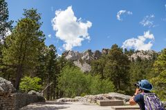 Taking a Picure of Mount Rushmore. A young man stands at the base of the mountain to take a picture of Mount Rushmore with pine trees and blue sky royalty free stock images